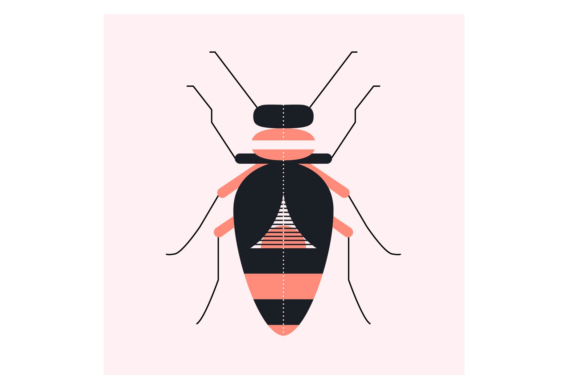 insects-illustration-02-alice-iuri