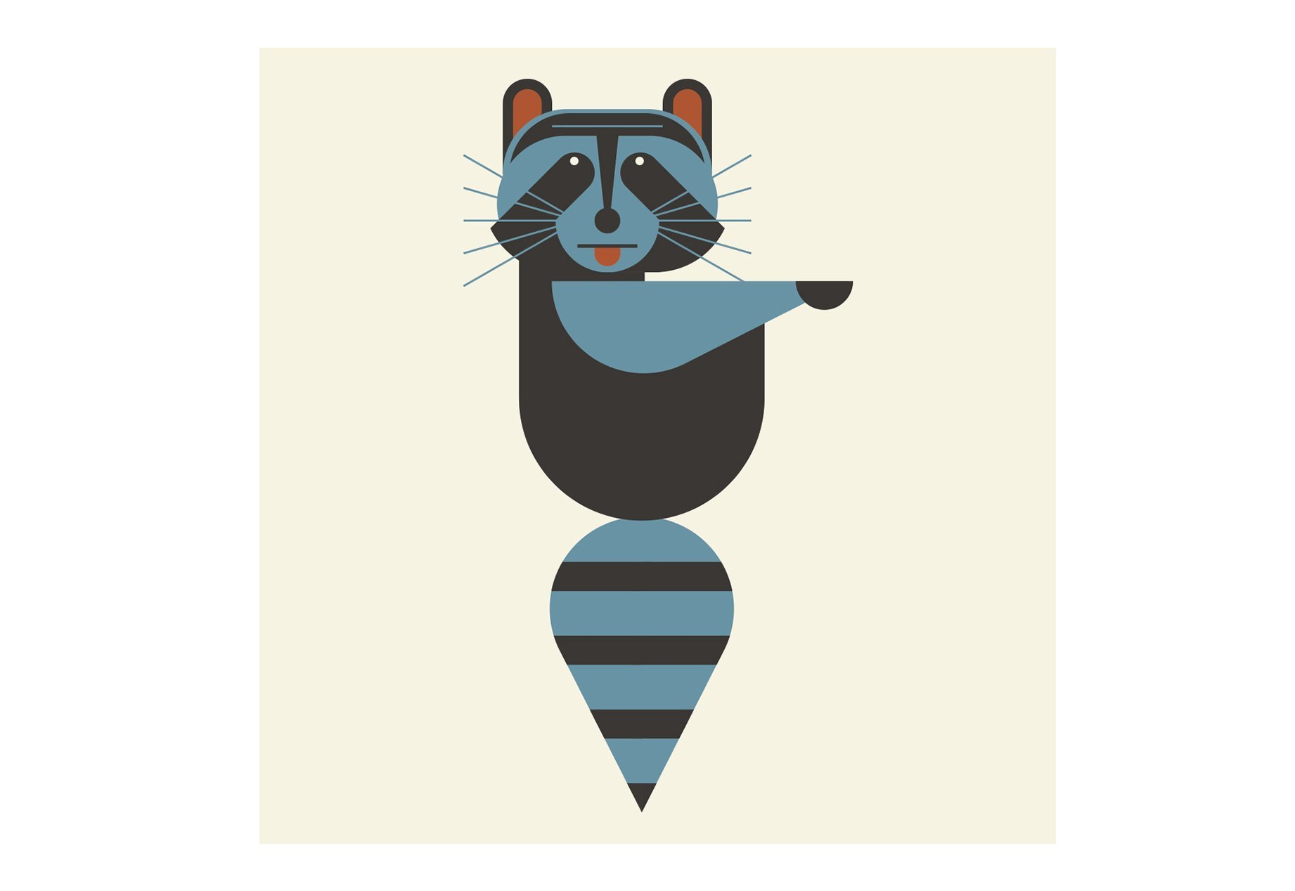raccoon-illustration-alice-iuri